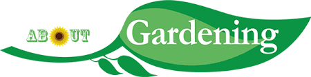About gardening talks about great back gardening and outdoors like inflatable hot tubs